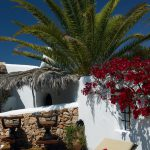 ibiza-property-management-villa-rental-can-verru-16